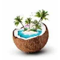 Herrlan Cocos Dream E-Liquid