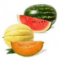 SC Melonenmix E-Liquid